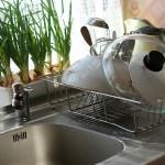 kitchen-322719_1280